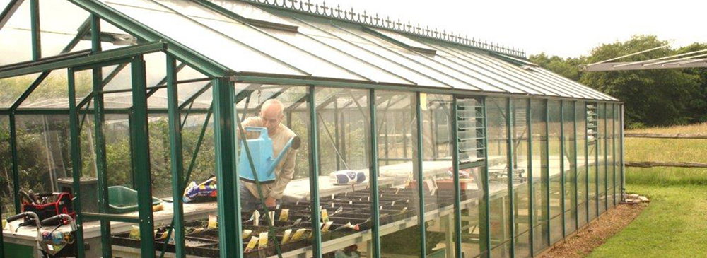 La Vita Nova care home greenhouse.alt